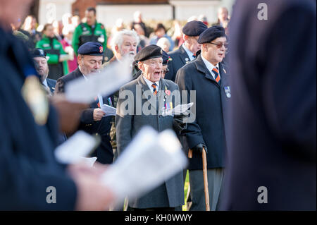 Veterans and members of the Royal Sussex Regiment Association Chichester branch sing Sussex By The Sea during the - Stock Photo