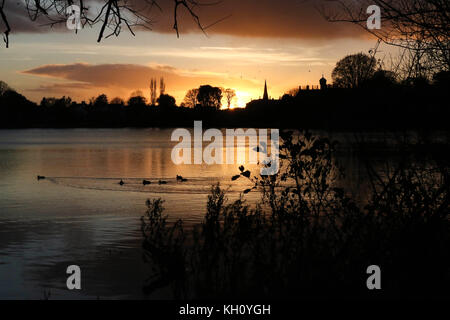 Lurgan Park Lake, Northern Ireland, UK. 12 November 2017. A blustery day with cold north-westerly winds and showers - Stock Photo