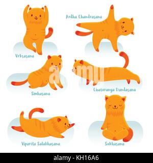 cute cartoon red cat practicing yoga for beginners