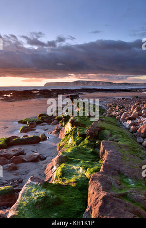 isle of wight atmospheric seascape with seaweed covered rocks on a rugged beach at sunset. - Stock Photo