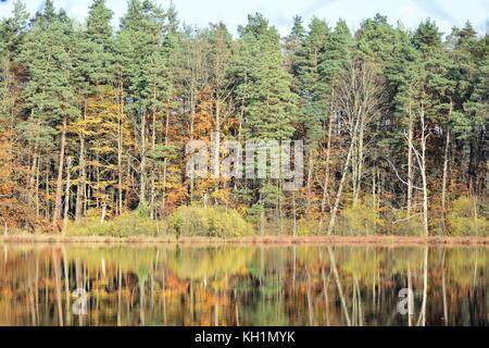 Autumn reflections in a calm forest lake, beautiful colors of autumn landscape - Stock Photo