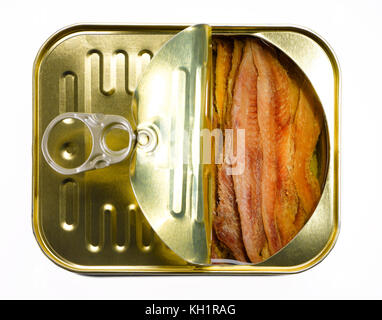 anchovies - Stock Photo