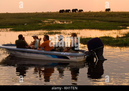 Tourists at sunset on a boat watching a herd of elephants in the distance by the Chobe river, Chobe National Park, - Stock Photo