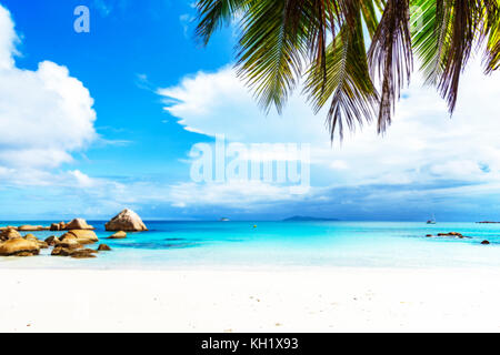Picturesque dream beach with white sand, golden granite rocks, palm trees, turquoise water and a blue sky at anse - Stock Photo