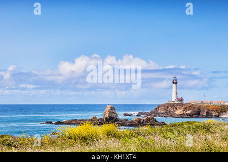 Spring flowers at Pigeon Point, California, USA. - Stock Photo