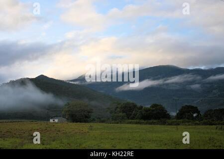 green field with a lonley house in Venezuela - Stock Photo
