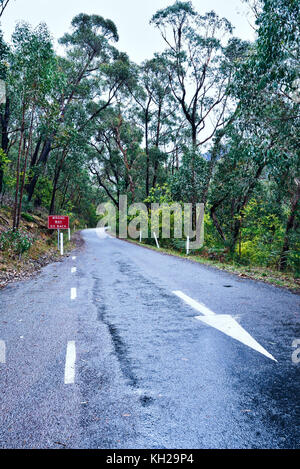 Signboard saying 'Wrong Way, Go Back'. With an arrow on the road pointing backwards. - Stock Photo