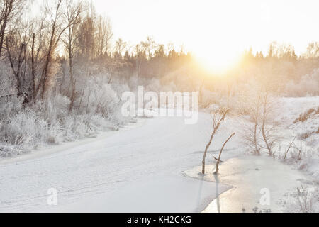 Plants under snow at riverbank early winter morning - Stock Photo
