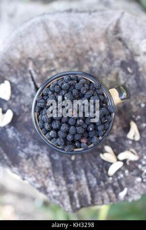 Wild tasmanian black pepperberries in a cup over rustic wood log - Stock Photo