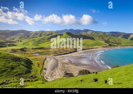 The rolling green hills of the Coromandel Peninsula at Port Jackson, New Zealand. - Stock Photo
