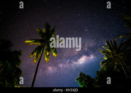 Milkyway behind palm trees in Indonesia - Stock Photo