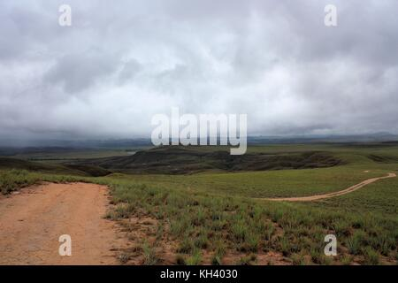 green landscape with lonley road in Gran Sabana Venezuela - Stock Photo