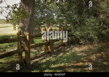 Tree branch fence in the countryside with oak trees - Stock Photo