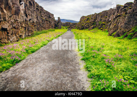 Walking Trail in a Thingvellir National Park, Iceland, Europe - Stock Photo