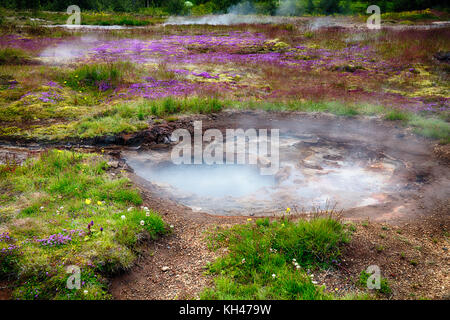Close Up View of a Meadow with Steaming Hot Springs, Haukadalur Valley, Southern Iceland - Stock Photo