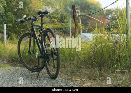 A bicycle parked near a fence during a warm evening. - Stock Photo