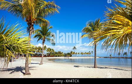The Round Beach at Matheson Hammock County Park Miami Florida - Stock Photo