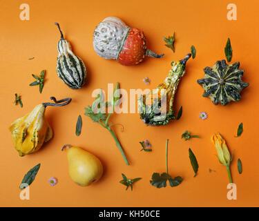 autumn pattern from decorative pumpkin - Stock Photo