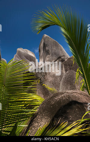 The Seychelles, La Digue, L'Union Estate, palm fronds and rocks at Anse Source d'Argent beach - Stock Photo