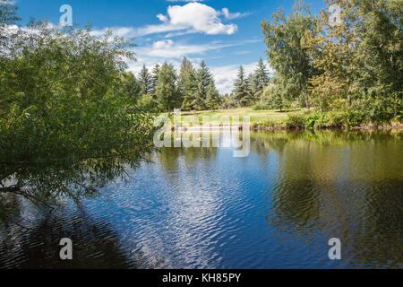 Pond in Alberta Canada - Stock Photo