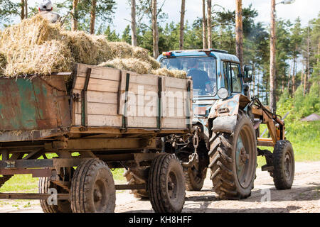 A large tractor carries bale with hay along the picturesque forest road. - Stock Photo