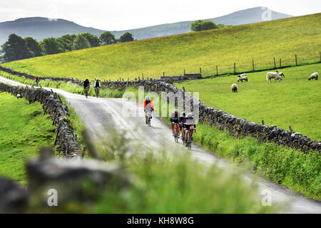 Cyclists cycling in a sportive along a country lane near Eshton, Yorkshire Dales UK - Stock Photo