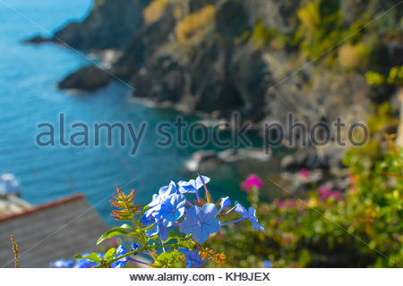 View of the Mediterranean sea from the hillside in the city of Vernazza, Cinque Terre Italy - Stock Photo