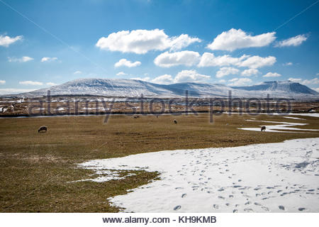 Ingleborough covered with snow on sunny winters day - Stock Photo