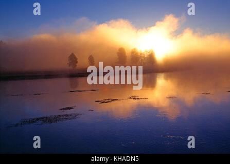 USA. Wyoming. Yellowstone National Park. Misty sunrise over Alum Creek. - Stock Photo