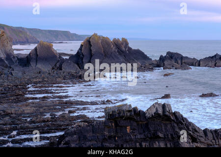 Rocky coast at dusk, Screda Point near Hartland Quay, Hartland, Devon, England, Great Britain - Stock Photo