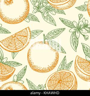 Orange fruit hand drawn pattern. Yellow oranges, green leaves and flowers seamless background pattern vector drawing - Stock Photo