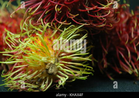 Rambutan Lychee Exotic Fruit - Stock Photo