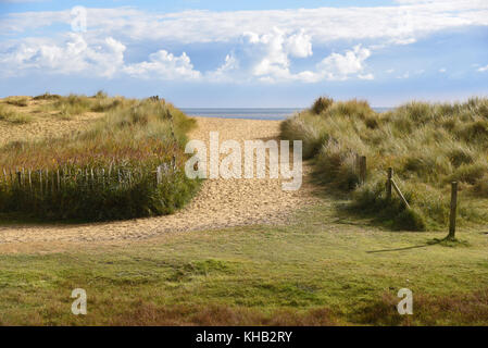 Sandy beach path to the sea through grassy dunes in Norfolk, England - Stock Photo