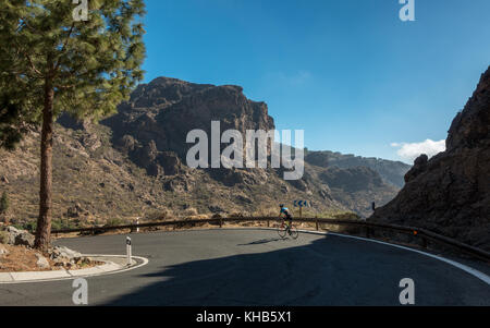 Cyclist cycling a hairpin bend on a road bike with mountain views inland descending to Ayacata on the GC-600 road, - Stock Photo