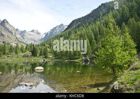 Vallée de la Gordolasque in Mercantour *** Local Caption *** France, Alpes du Sud, Mercantour, alps, mountains, - Stock Photo