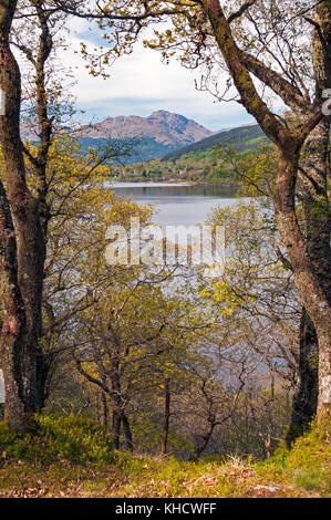 View across Loch Lomond from West Highland Way trail, Scotland - Stock Photo