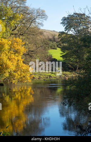 Autumn foliage reflected in the river Tees, from the Teesdale Way, near Barnard Castle, Co. Durham, England, UK - Stock Photo