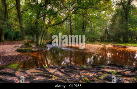 Landscape view of Ober Water, in the New Forest, Hampshire, UK. - Stock Photo
