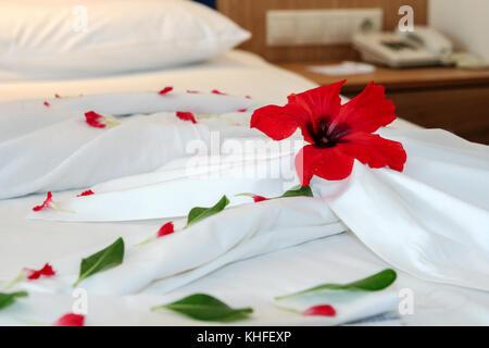 Romantic Flower Petal Arrangement on a Hotel Bed. - Stock Photo