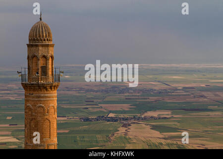 Minaret of the Great Mosque known also as Ulu Cami with mesopotamian plain in the background, Mardin, Turkey. - Stock Photo