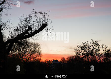 Clissold Park, Stoke Newington, London, UK. 17th Nov, 2017. UK Weather: Dramatic sunset over Clissold Park, Stoke - Stock Photo