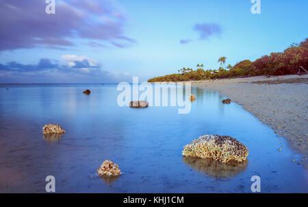 Corals on the beach, Coral Coast, Viti Levu, Fiji - Stock Photo