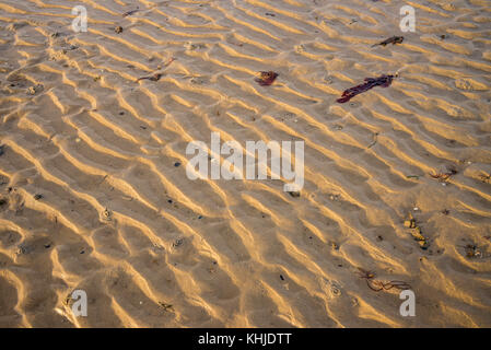 Wave ripple patterns in beach sand at Lepe Country Park, foreshore and beach, New Forest, Hampshire, UK - Stock Photo