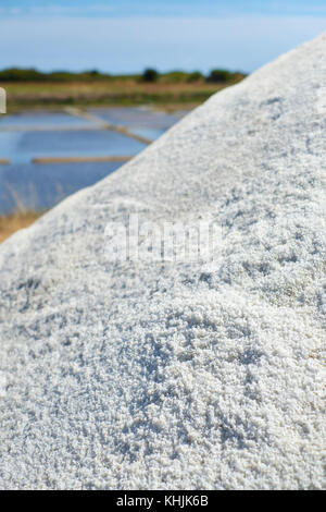 The working salt flats and marshes producing Fleur de Sel in Guerande near Le Croisic in the Loire - Atlantique region of Brittany France. Stock Photo