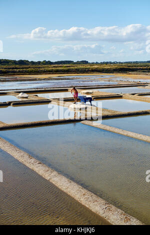 The working salt flats of Guerande near Le Croisic in the Loire - Atlantique region of Brittany France. Stock Photo