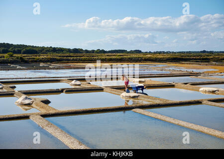 The summer landscape of the working salt flats of Guerande near Le Croisic in the Loire - Atlantique region of Brittany - Stock Photo