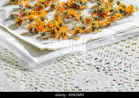 Calendula Officinalis Dried Flowers on the Paper on Table. Process of Drying Medicinal Plants. Homeopathy Concept - Stock Photo