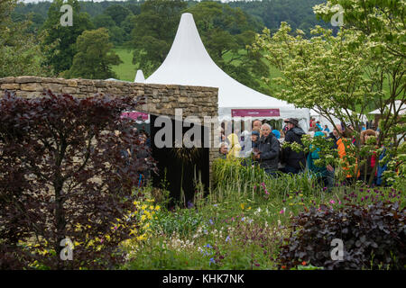Walls shelter quiet, secluded area with plants in country style garden - Wedgewood Garden, RHS Chatsworth House - Stock Photo