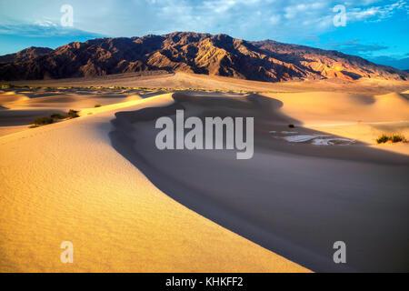 Sand dunes in the desert at sunrise