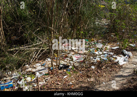 Garbage washed by the sea in bushes, environmental pollution, Nusa Lembongan, Small Sunda Islands, Indonesia - Stock Photo